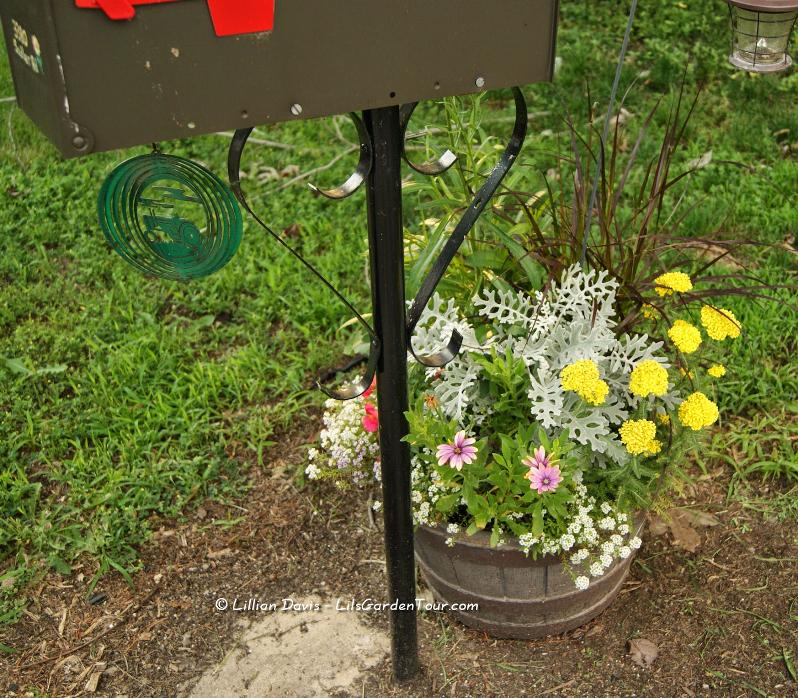 Hopefully Deer Resistant Flower Containers Lils Garden Tour